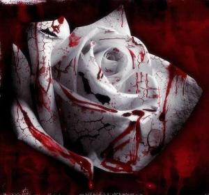 bloody-flowers--large-msg-115349290234