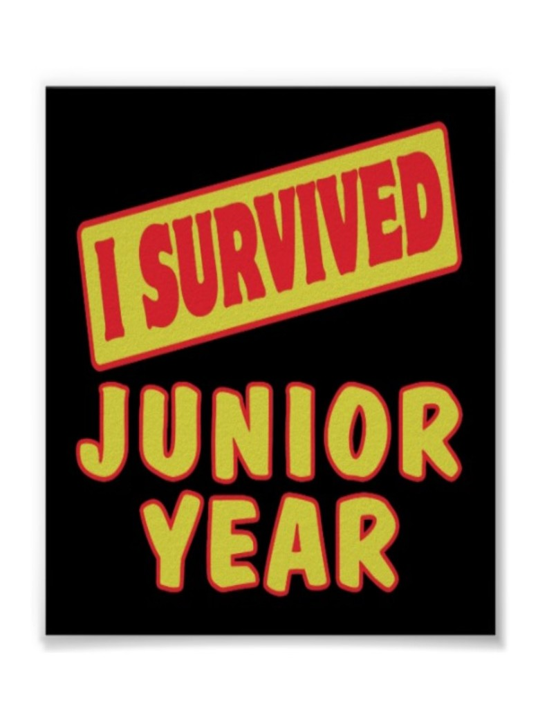 surviving junior year 1